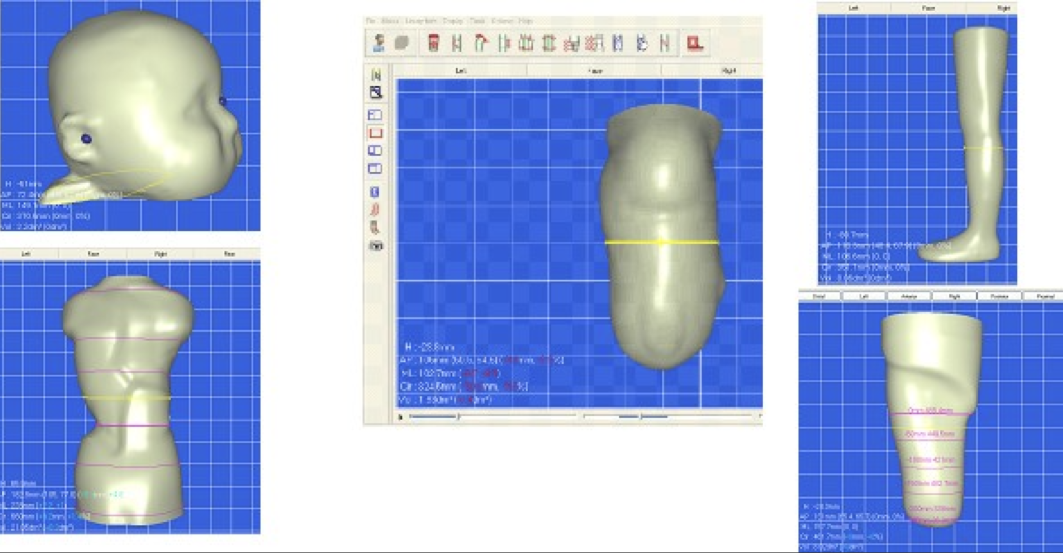 These are examples of CAD scans for prosthetic limbs.